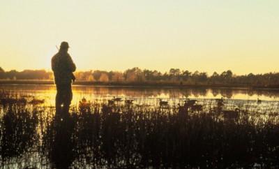 hunting-at-sunset-725x476