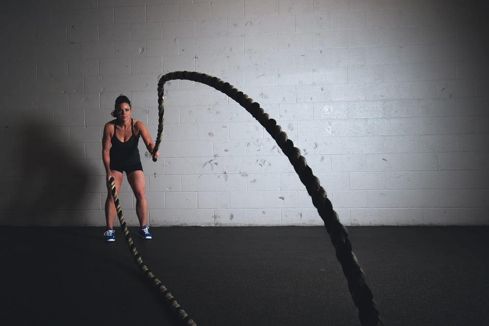 Ropes Exercise Gym Sport Training Fitness Workout