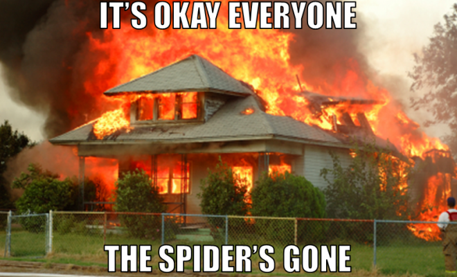 Not A Meme California Man Sets House On Fire To Kill Spiders